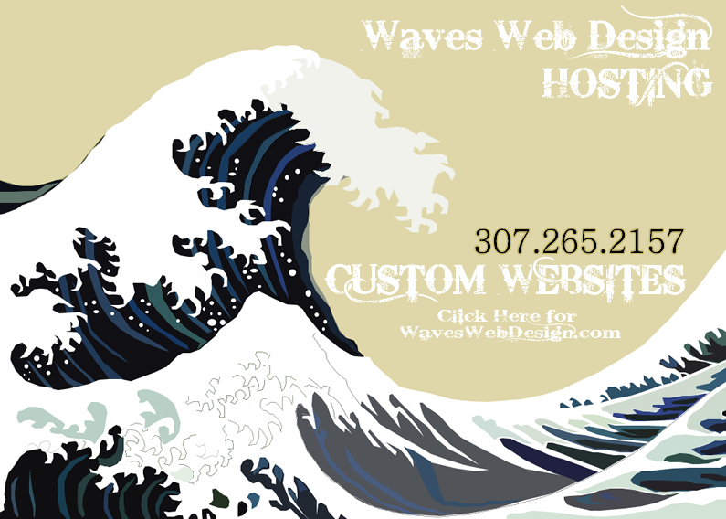 Waves Web Design Biz is the Hosting Service Domain brought to you by Waves Web Design a custom website design company